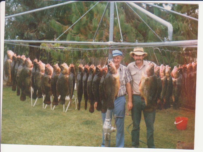 Fishing_001.jpg