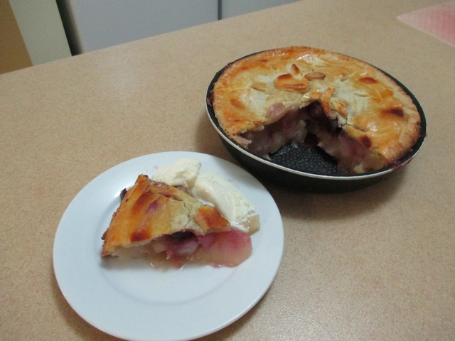 apple_and_cherry_pie_06.jpg